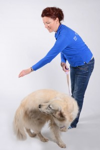 doggtdance