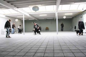 Workshop Dogdance Waalwijk okt '15